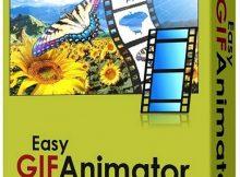 Easy GIF Animator Pro Full Crack